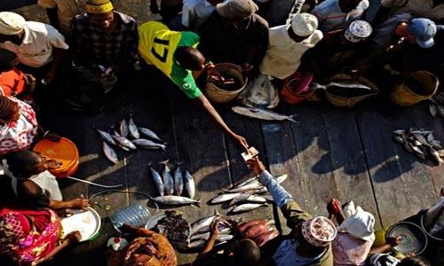 Chợ cá Kikuvo