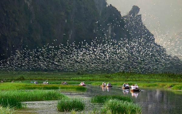 Khu bảo tồn thiên nhiên Vân Long